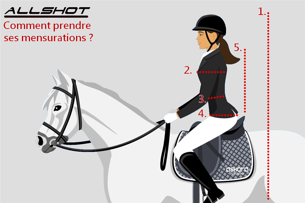 Allshot-Mensuration-Gilet-Airbag-equitation